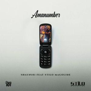 Shaun101 – AmaNumber ft. Stilo Magolide
