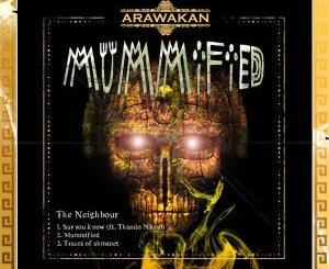 The Neighbour – Mummified EP