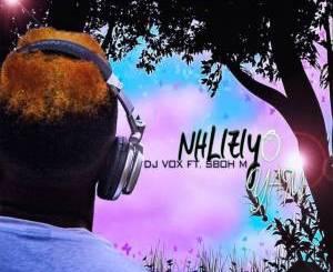 DJ Vox – Inhliziyo (feat. Sboh M)