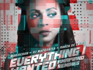 Mariechan – everything i wanted (Amapiano Mix)