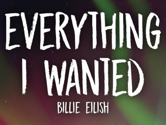 Billie Eilish – ​everything i wanted Lyrics