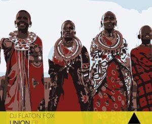 DJ Flaton Fox & Dee Cee – The Dark Side