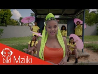 Darassa Feat. Sho Madjozi - I Like It (Official Music Video)