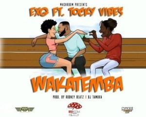 ExQ Ft. Tocky Vibes – Wakatemba