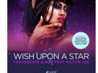 Tracebeatz & Bob – Wish Upon A Star (Lemon & Herb Remix)