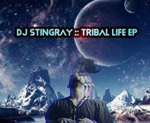 DJ Stingray – Sabroso