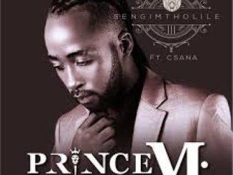 Prince M – Ubedlula Bonke