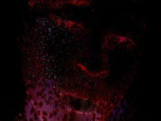 PatricKxxLee – H3llywood Blvd