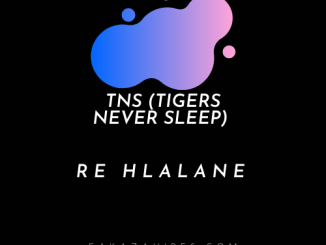 TNS (Tigers Never Sleep) – Re Hlalane