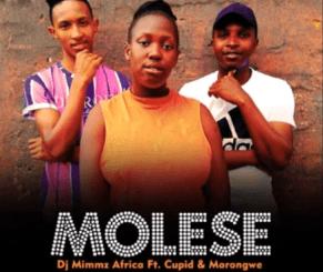 Dj Mimmz Africa – Molese Ft. Cupid & Morongwe (Original)