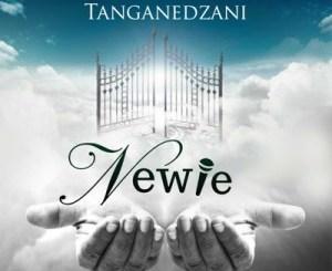 Newie – Tanganedzani (Live)