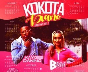 Kaygee DaKing & Bizizi – Kokota Piano (Amapiano, Vol. 1)