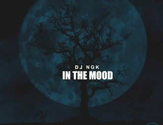 DJ NGK – Am In The Mood (AfroDrum Mix)