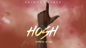 Prince Kaybee – Hosh (Lyrics) Ft. Sir Trill