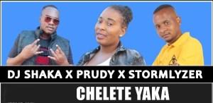 DJ Shaka, Prudy & Stormlyzer – Chelete Yaka