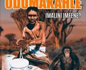 Dumakahle – Imalini Imfene EP