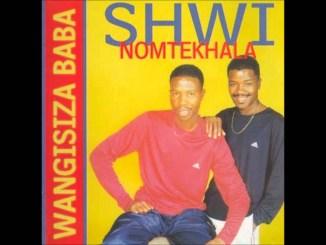 Ngafa - Song by Shwi Nomtekhala