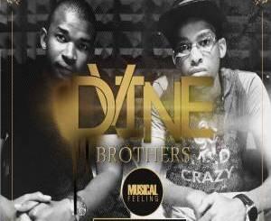 Album : Dvine Brothers – Musical Feeling