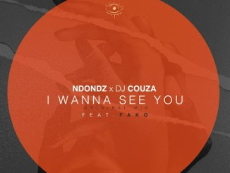 Ndondz & DJ Couza – I Wanna See You Ft. Fako (Original Mix)