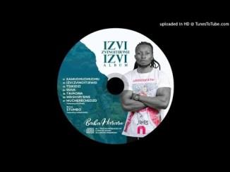 Baba Harare - Izvi Zvinoitirwei Izvi Album