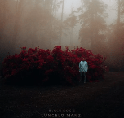VIDEO: Closure – Lungelo Manzi