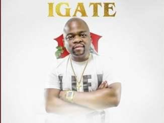 DJ Websta – iGate