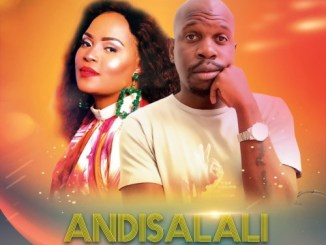 DrumPope – Andisalali (Afro Mix) Ft. DrumeticBoyz & Bucie