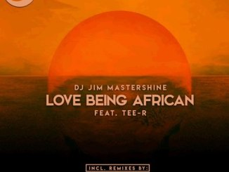 Love Being African (Remix Package) by Dj Jim Mastershine, Tee-R