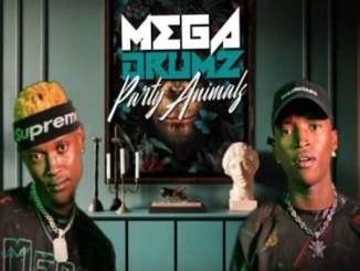 Megadrumz & Trademark – Sebenza Ft. Zama Radebe, Mangoli & ACHIM