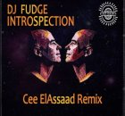 DJ Fudge – Introspection (Cee ElAssaad Introspective Remix)