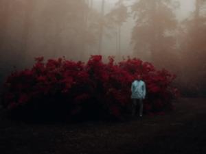 Lungelo Manzi – Matric Dance