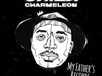China Charmeleon – Nyeri