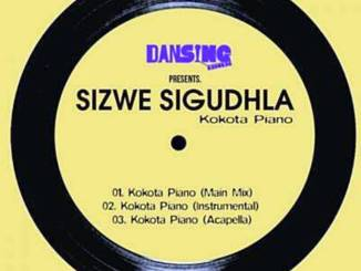 Brown Stereo & Sizwe Sigudhla - Kokota Piano (Main)