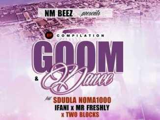 Sdudla Noma1000 Ft. Ifani & Mr Freshly – Sapha Ndenze