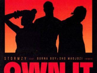 Stormzy – Own It (Remix)