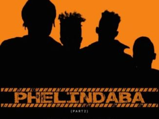 Amicable Music & ShokiNyza – Phelindaba (part 2)