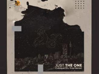 Cubique DJ – Just The One Ft. Troy Denari