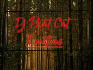 Dj Phat Cat – Emotions