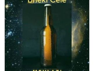 Mbulazi – Bheki Cele