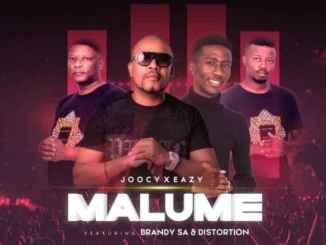 BrandySA & Distortion Ft. Joocy & Eazy – Malume