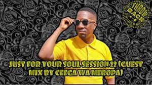 Ceega Wa Meropa – Just For Your Soul Session 22 (Guest Mix)