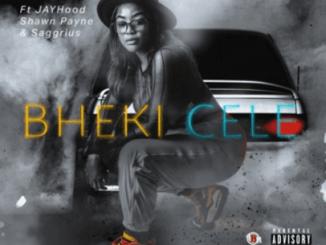DJ Sino Ft. Jayhood, Shawn Payne & Saggrius – Bheki Cele