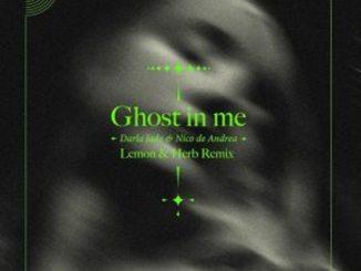 Nico De Andrea – Ghost in Me (Sparrow & Barbossa Remix),Nico De Andrea Ft. Darla Jade – Ghost in Me (Lemon & Herb Remix)
