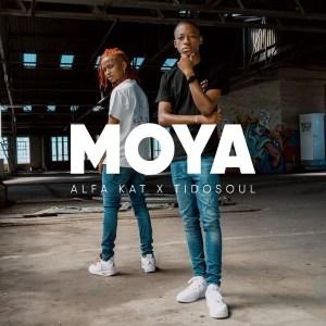 Alfa Kat & TidoSoul – Moya EP