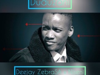 Deejay Zebra SA ft. Nisen – Duduzani