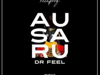 EP: Dr Feel – Ausaru