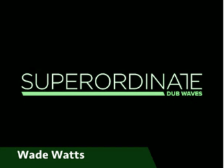 EP: Wade Watts – Riddles in Stone