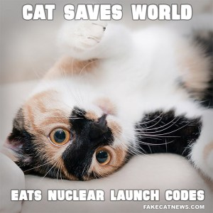 Cat Eats Nuclear Launch Codes