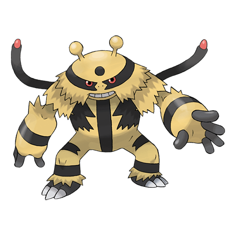 Pokemon 466 Electivire