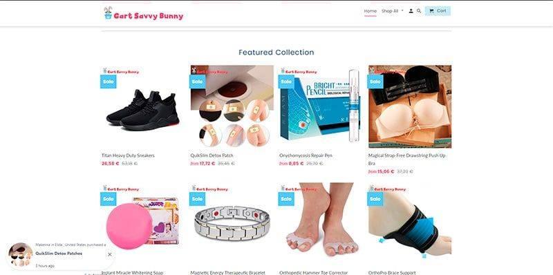 Cartsavvybunny.com Tienda Falsa Online Multiproducto